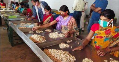 कृषकों की आय बढ़ाने इस वर्ष 20 उत्पादक कम्पनी तथा 600 खाद्य प्रसंस्करण इकाईयों की स्थापना होगी