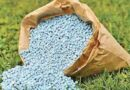 छत्तीसगढ़ में खाद-बीज के वितरण और मूल्य पर कड़ी निगरानी रखें