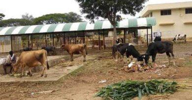 अलवर की 10 पंचायतों में नवीन पशु चिकित्सा केन्द्र