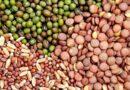 कृषि विभाग ने गुण नियंत्रण पर सख्ती के लिए 543 नमूने लिये