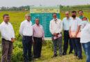 जनेकृविवि प्रजनक बीज उत्पादन में देश में अव्वल
