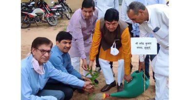 पोषण वाटिका महा अभियान एंव वृक्षारोपण कार्यक्रम में सांसद ने किया वृक्षारोपण