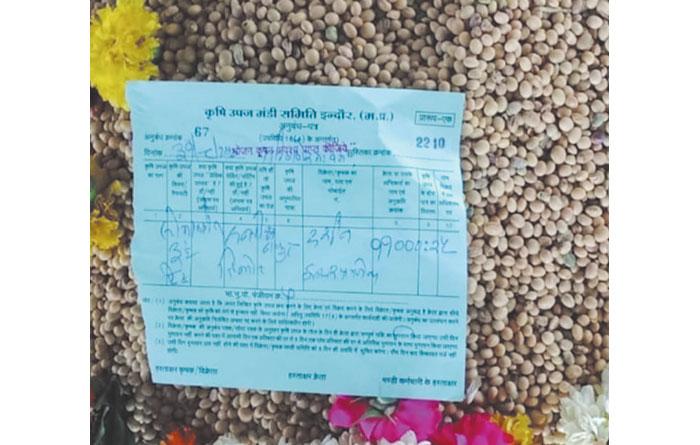 इंदौर मंडी में सोयाबीन का 11 हजार रु. क्विंटल से श्रीगणेश