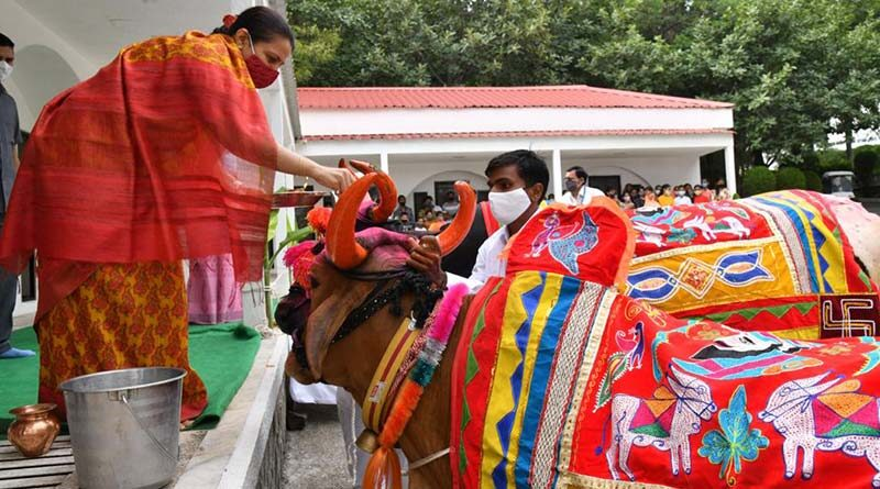 जैन इरिगेशन ने परंपरागत रूप से मनाया पोला उत्सव