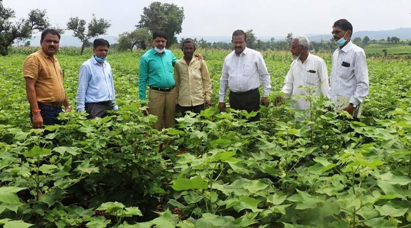 किसानों के खेतों में पहुँचा कृषि  विभाग का  दल