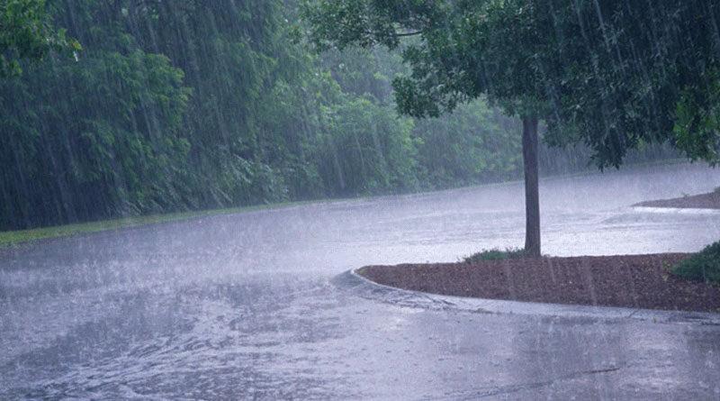 मप्र में दीर्घावधि औसत से 0.5 प्रतिशत अधिक हुई सामान्य वर्षा
