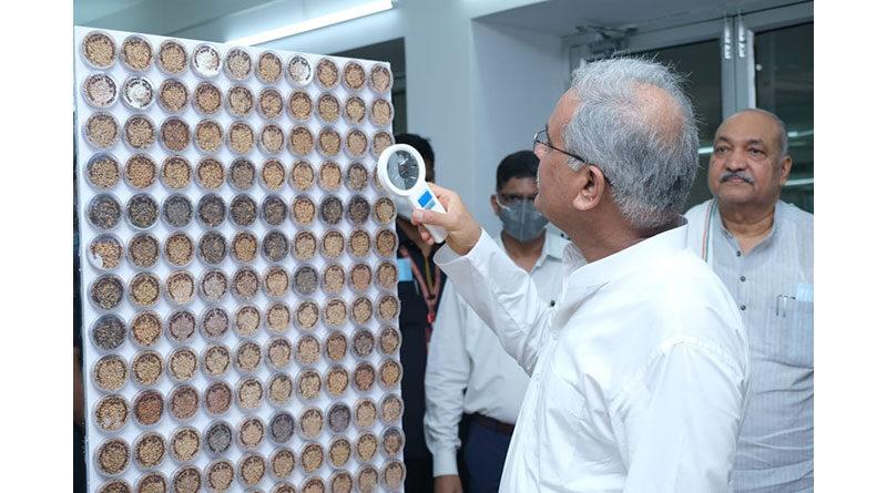 धान की 25 हजार किस्मों का बैंक रायपुर में, 8 नई किस्में जारी