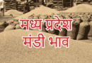 madhya pradesh mandi rates