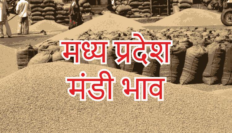 मध्य प्रदेश की विभिन्न मंडियों अनुसार प्रमुख जिंसों के भाव